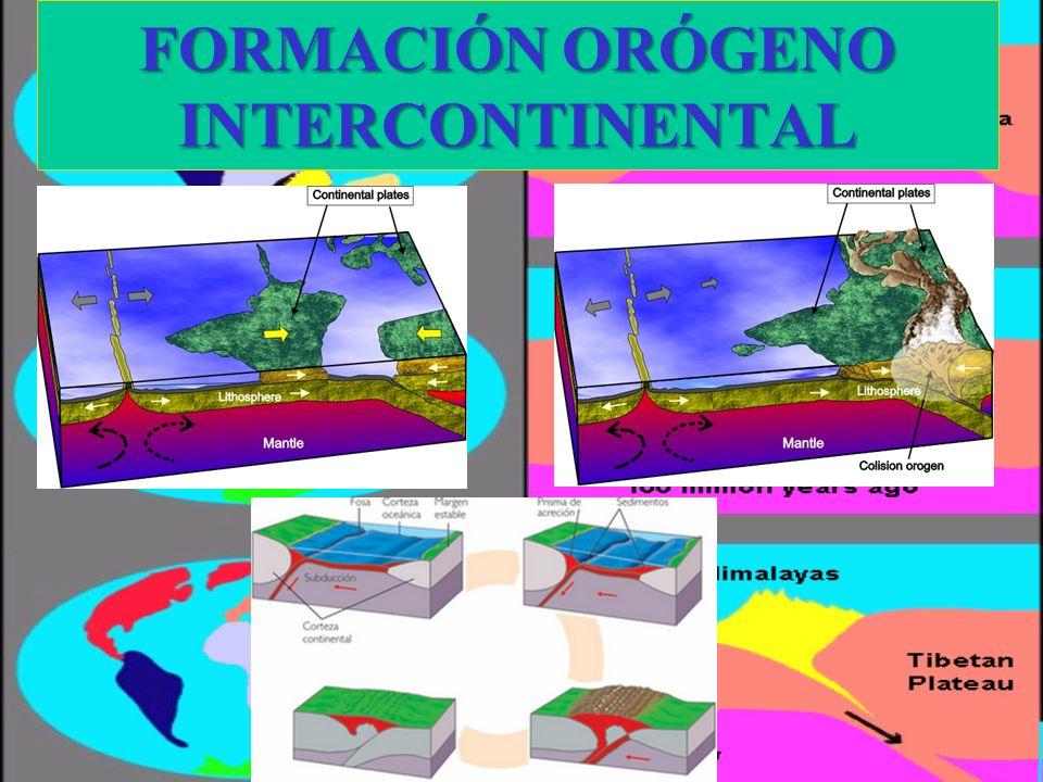 FORMACIÓN ORÓGENO INTERCONTINENTAL