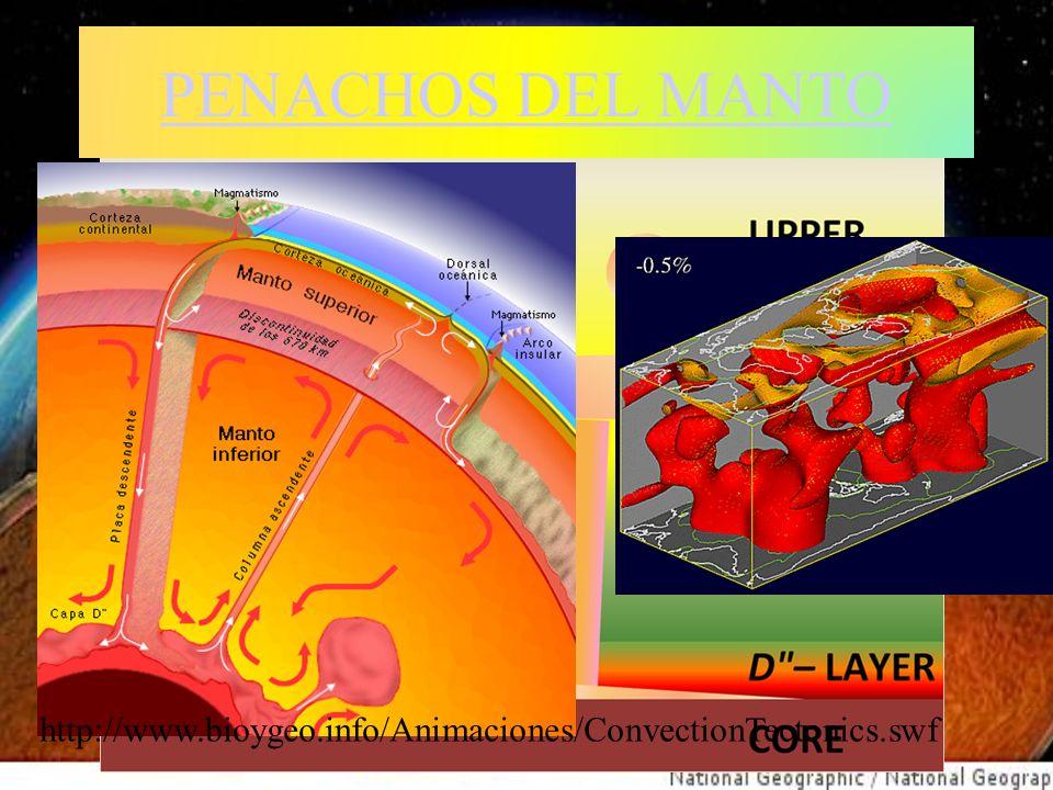 PENACHOS DEL MANTO http://www.bioygeo.info/Animaciones/ConvectionTectonics.swf.