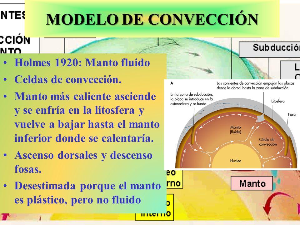 MODELO DE CONVECCIÓN Holmes 1920: Manto fluido Celdas de convección.