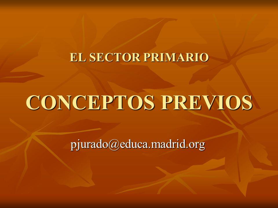 EL SECTOR PRIMARIO CONCEPTOS PREVIOS