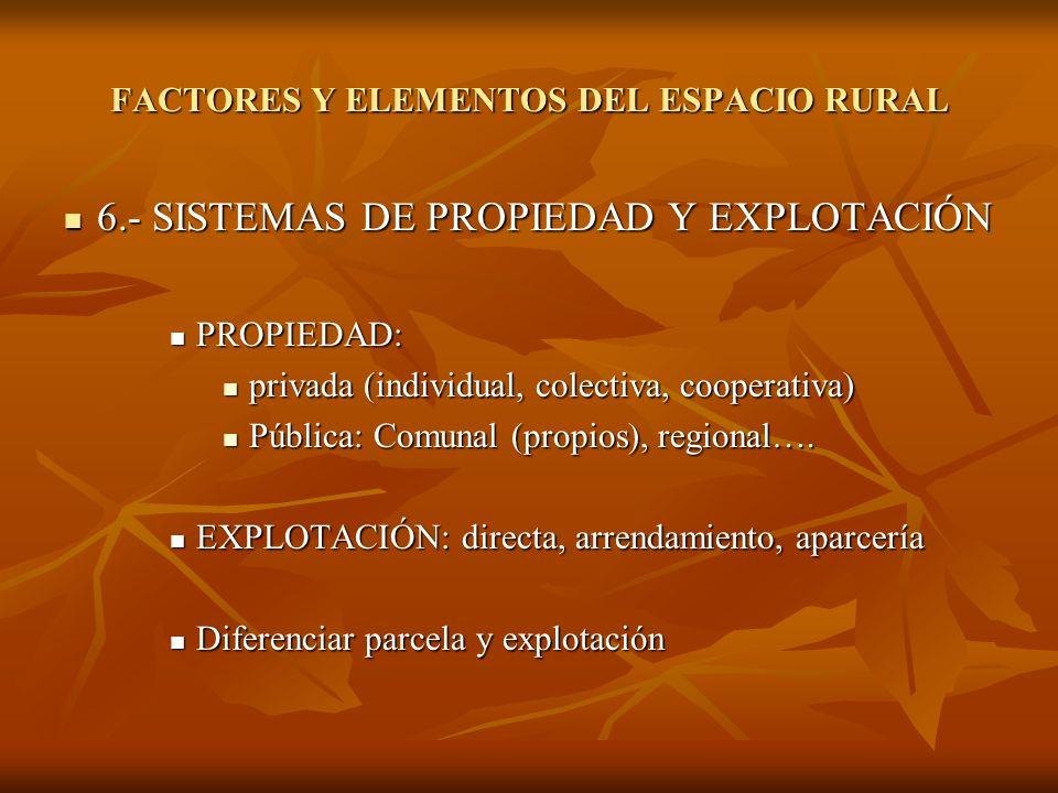FACTORES Y ELEMENTOS DEL ESPACIO RURAL
