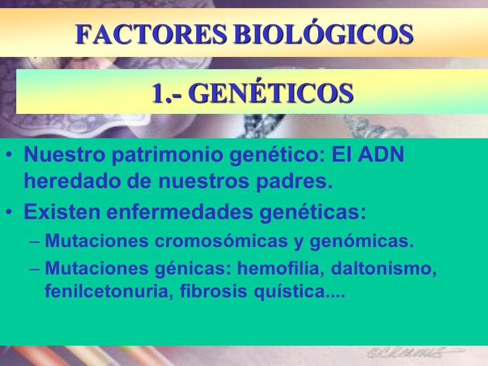 FACTORES BIOLÓGICOS 1.- GENÉTICOS