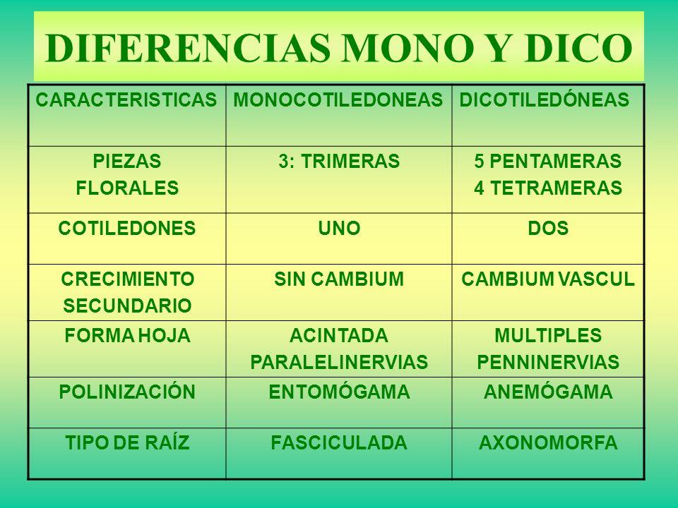 DIFERENCIAS MONO Y DICO