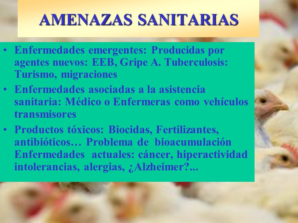 AMENAZAS SANITARIAS