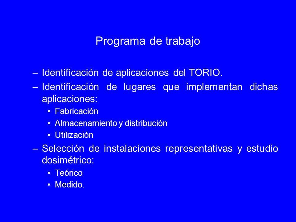 Programa de trabajo Identificación de aplicaciones del TORIO.