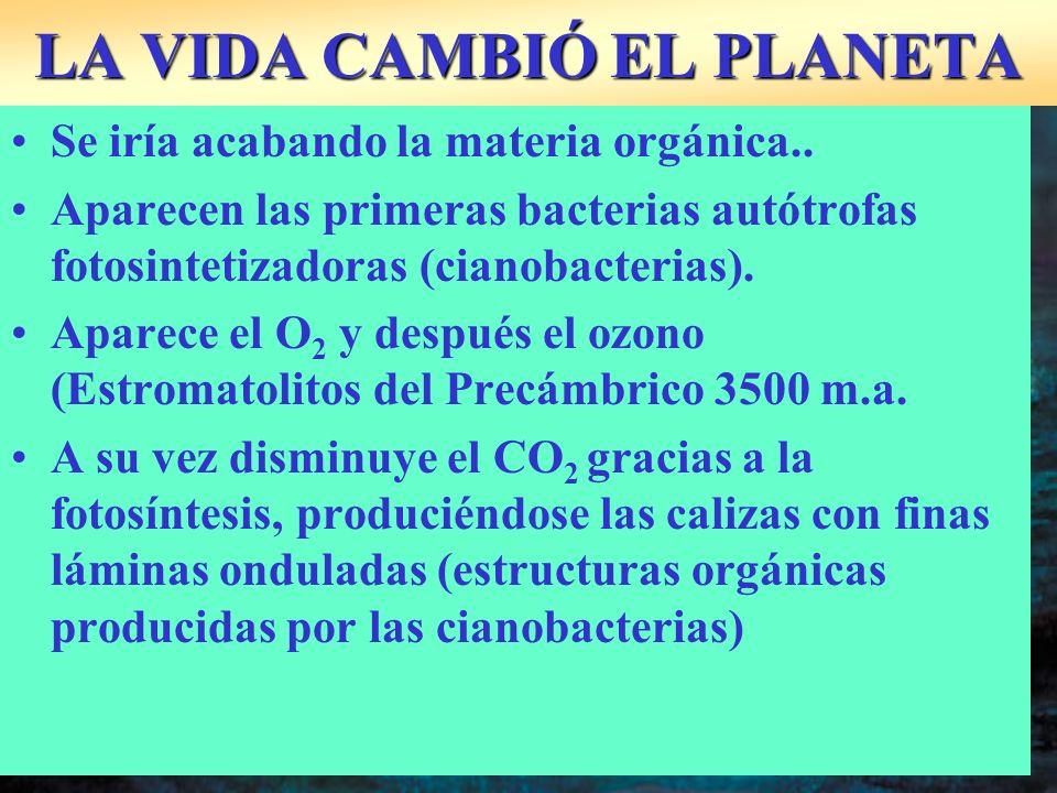 LA VIDA CAMBIÓ EL PLANETA