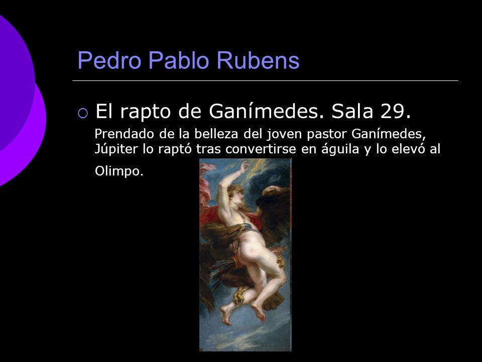 Pedro Pablo Rubens El rapto de Ganímedes. Sala 29.