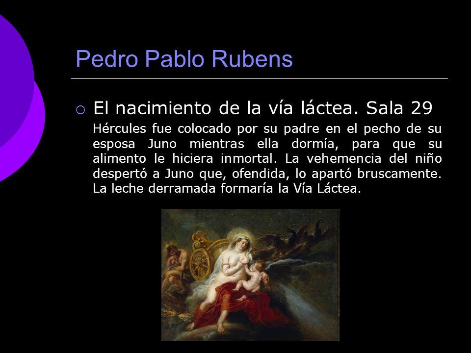 Pedro Pablo Rubens El nacimiento de la vía láctea. Sala 29