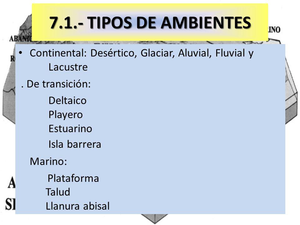 7.1.- TIPOS DE AMBIENTESContinental: Desértico, Glaciar, Aluvial, Fluvial y Lacustre. . De transición: