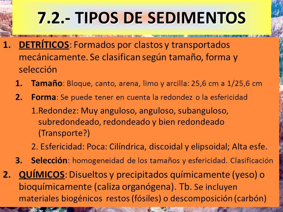 7.2.- TIPOS DE SEDIMENTOSDETRÍTICOS: Formados por clastos y transportados mecánicamente. Se clasifican según tamaño, forma y selección.