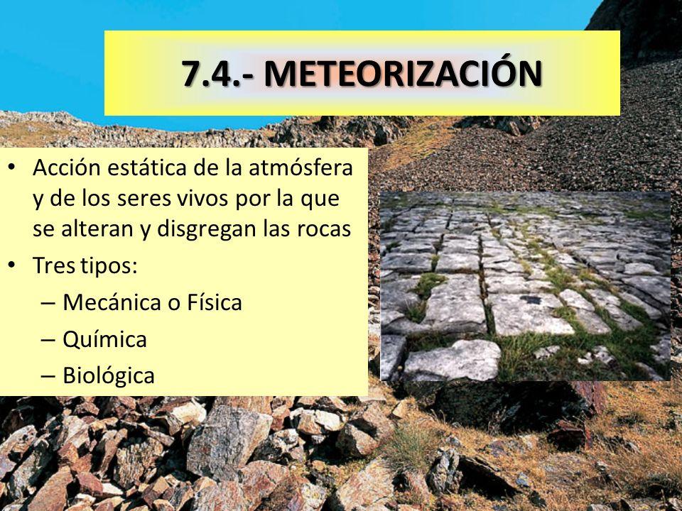 7.4.- METEORIZACIÓNAcción estática de la atmósfera y de los seres vivos por la que se alteran y disgregan las rocas.