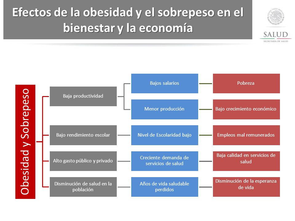 Efectos de la obesidad y el sobrepeso en el bienestar y la economía