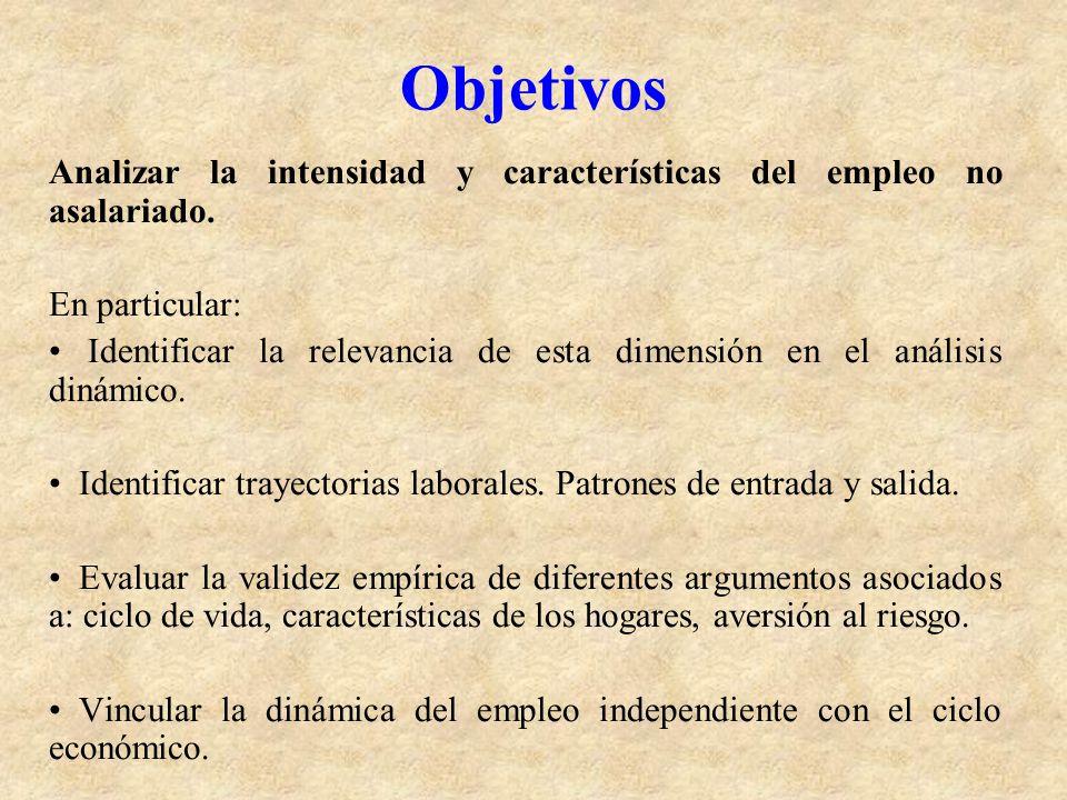 Objetivos Analizar la intensidad y características del empleo no asalariado. En particular: