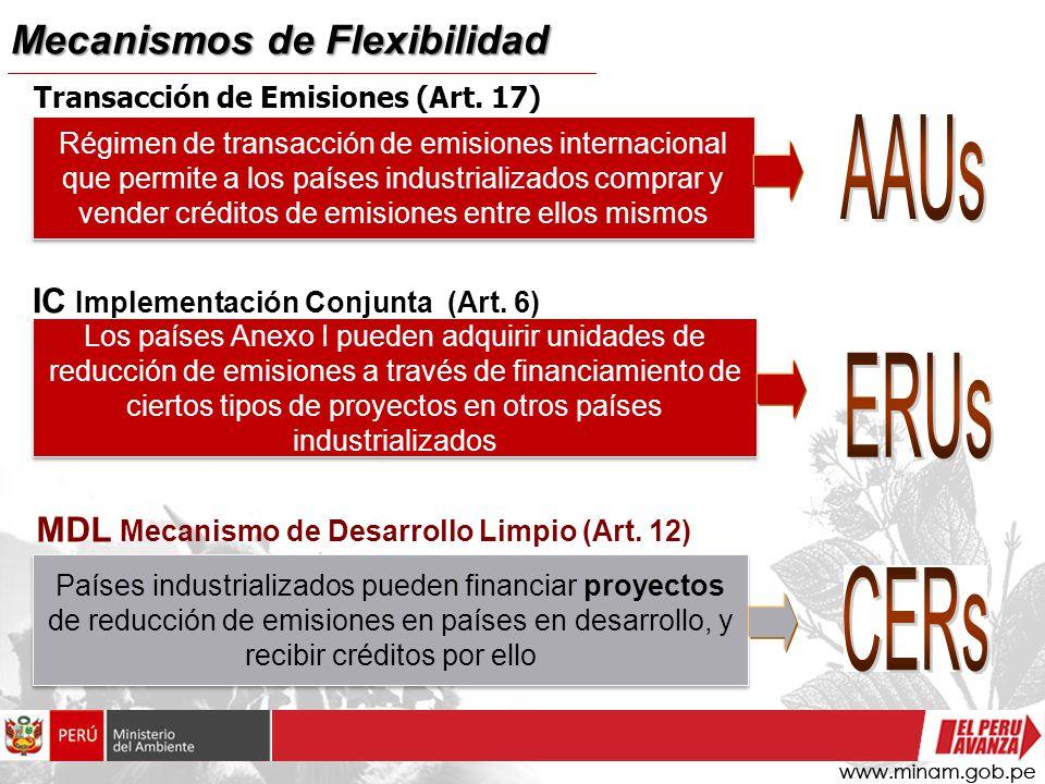 AAUs ERUs CERs Mecanismos de Flexibilidad