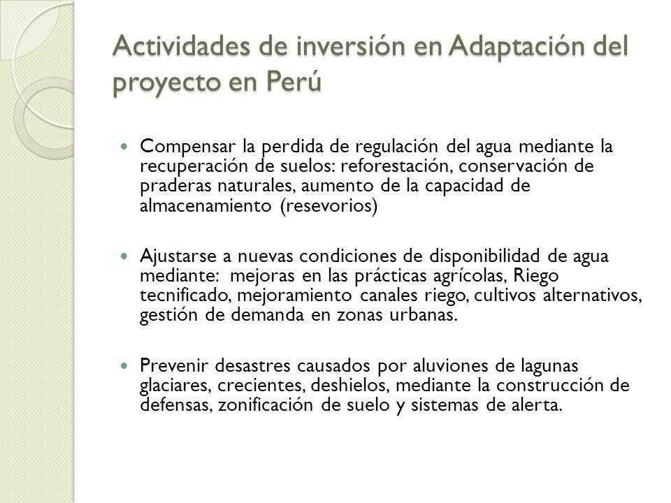 Actividades de inversión en Adaptación del proyecto en Perú