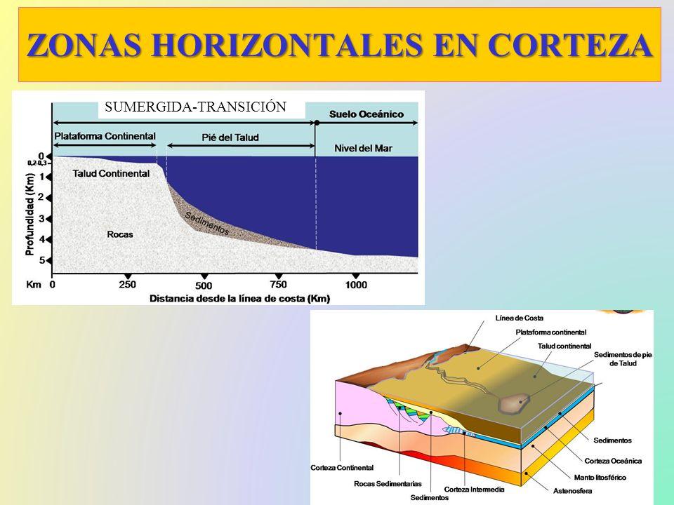 ZONAS HORIZONTALES EN CORTEZA