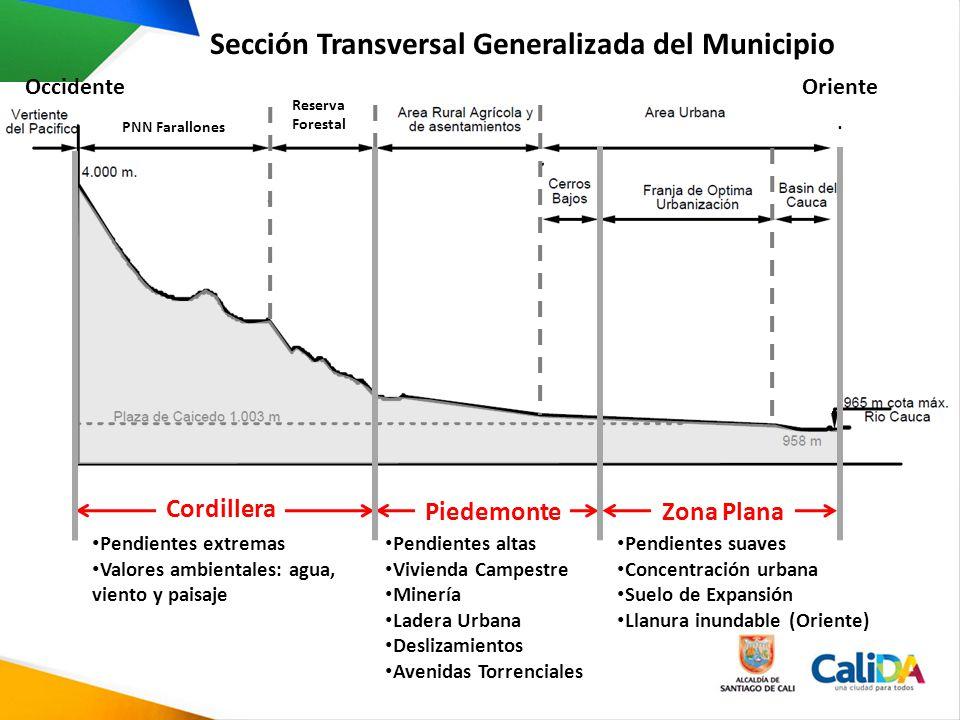Sección Transversal Generalizada del Municipio