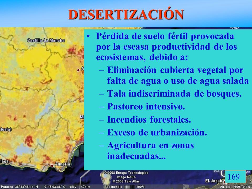 DESERTIZACIÓN Pérdida de suelo fértil provocada por la escasa productividad de los ecosistemas, debido a: