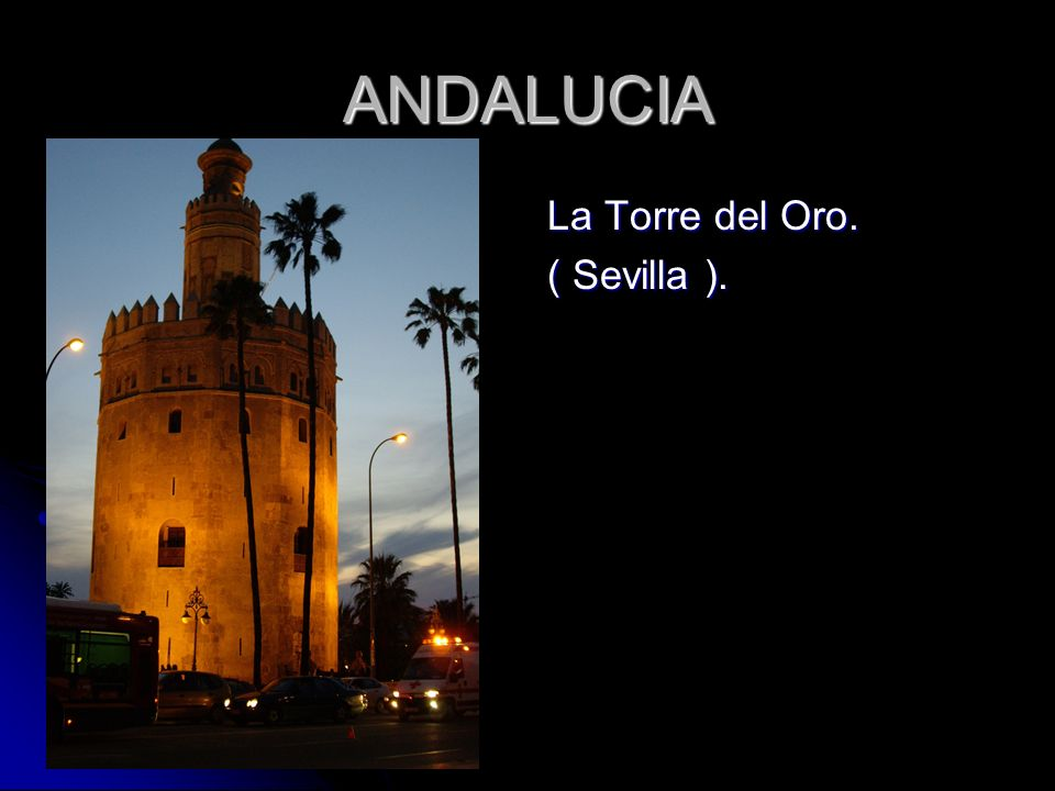 ANDALUCIA La Torre del Oro. ( Sevilla ).