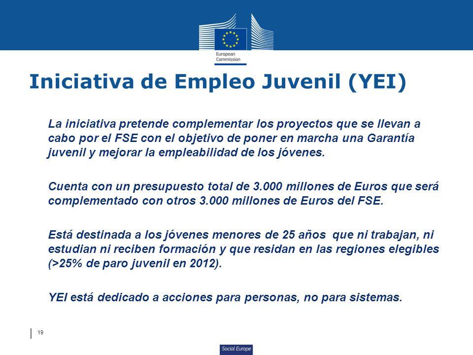 Iniciativa de Empleo Juvenil (YEI)