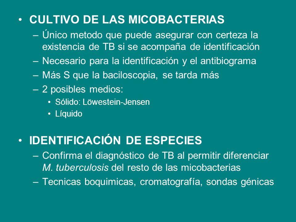 CULTIVO DE LAS MICOBACTERIAS
