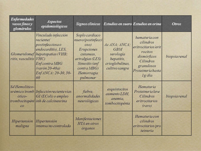 Enfermedades vasos finos y glomérulos Aspectos epidemiológicos