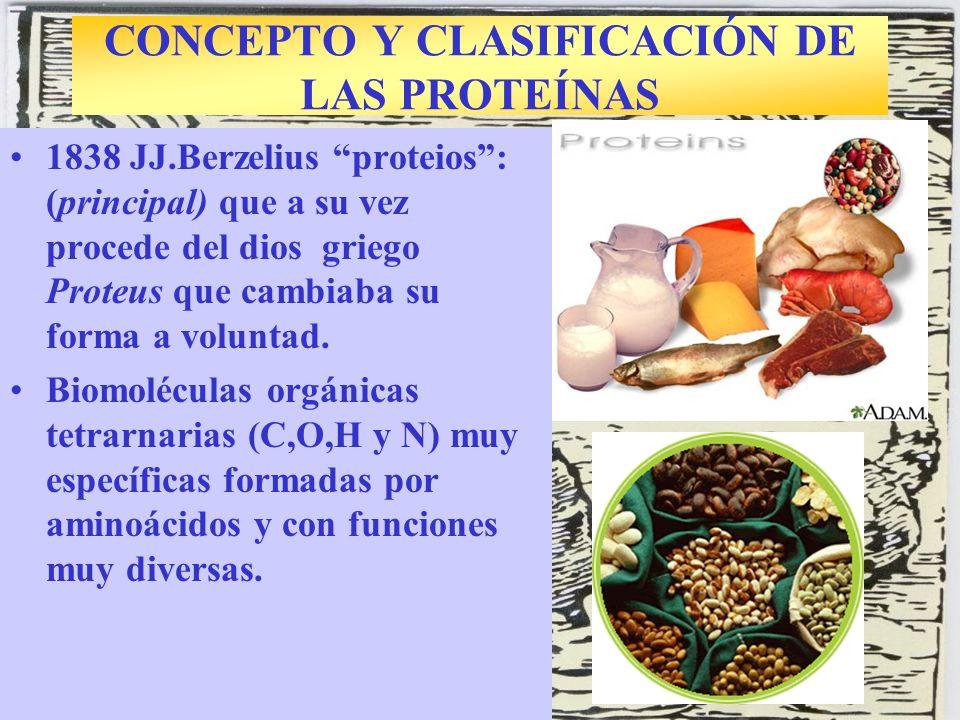 CONCEPTO Y CLASIFICACIÓN DE LAS PROTEÍNAS