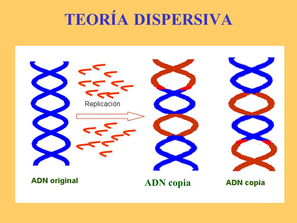 TEORÍA DISPERSIVA ADN copia