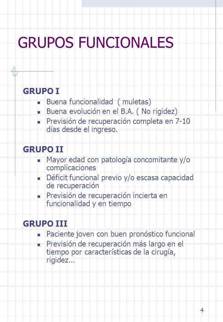 GRUPOS FUNCIONALES GRUPO I GRUPO II GRUPO III