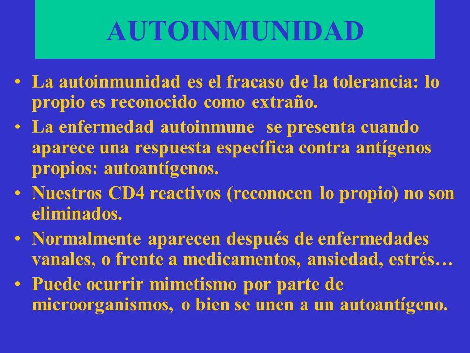 AUTOINMUNIDADLa autoinmunidad es el fracaso de la tolerancia: lo propio es reconocido como extraño.