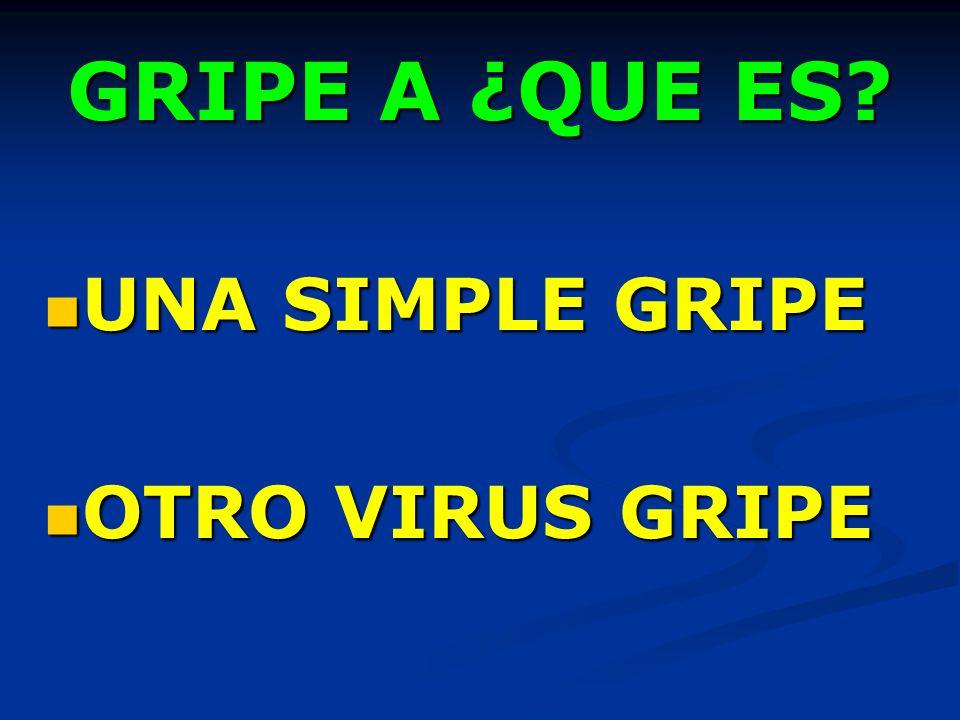 GRIPE A ¿QUE ES UNA SIMPLE GRIPE OTRO VIRUS GRIPE