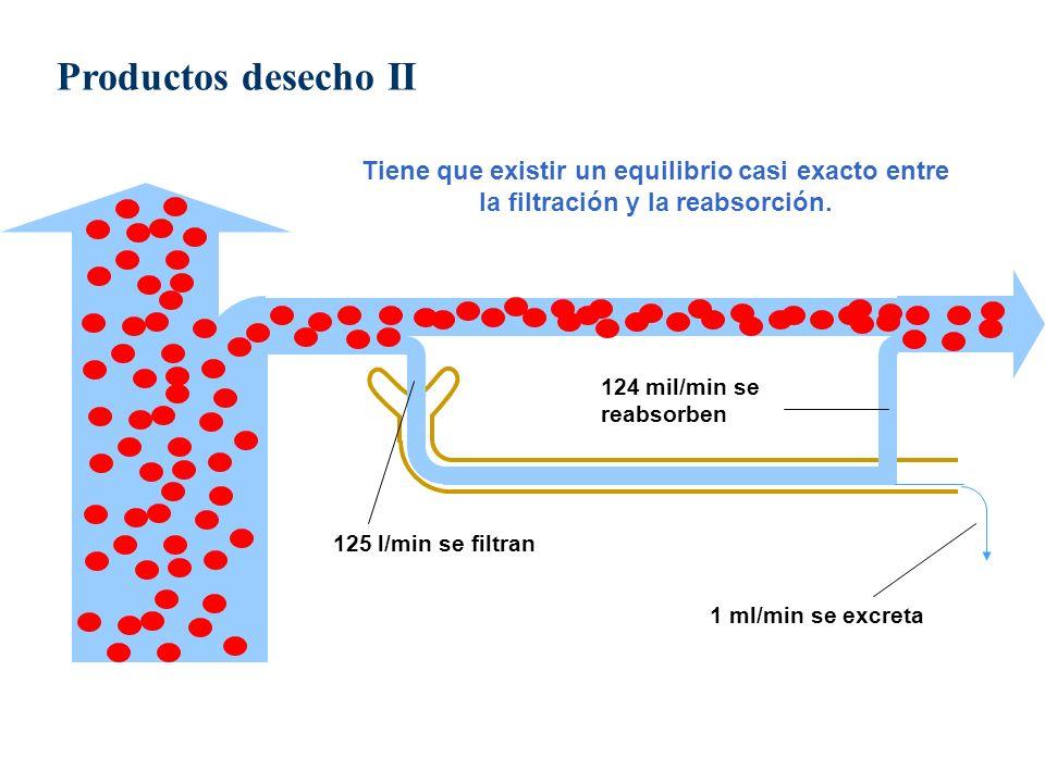 Productos desecho IITiene que existir un equilibrio casi exacto entre la filtración y la reabsorción.
