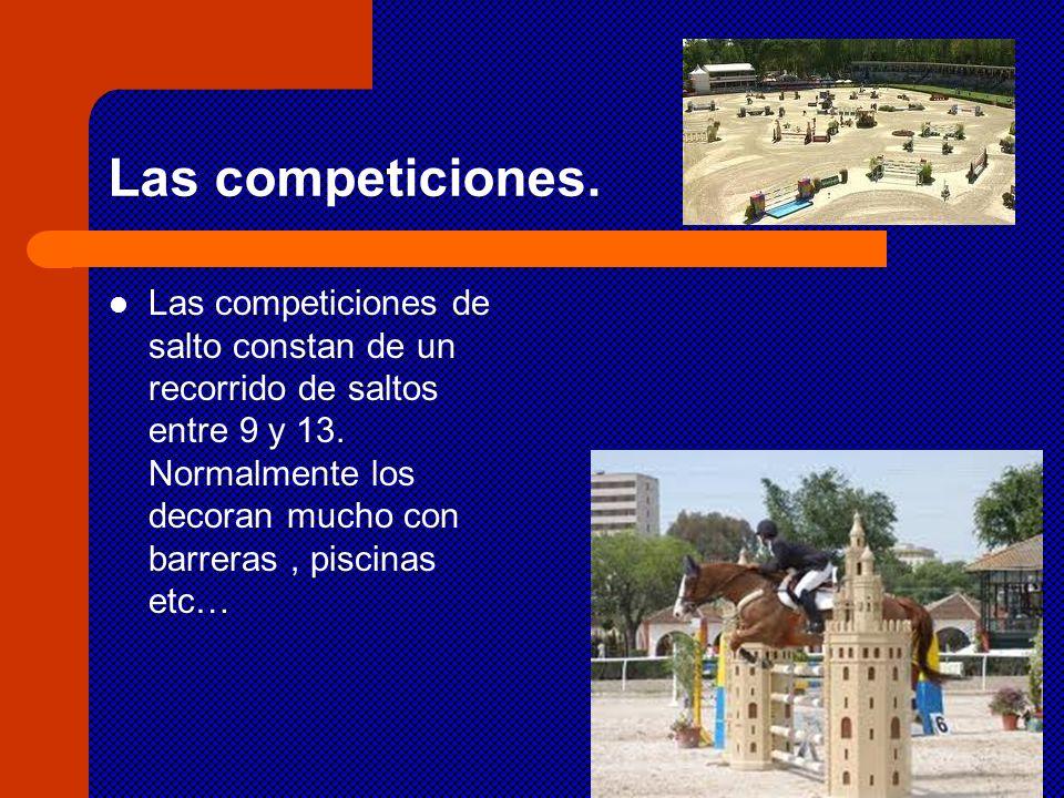 Las competiciones.