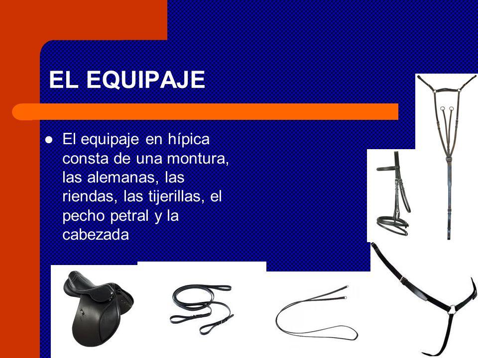 EL EQUIPAJE El equipaje en hípica consta de una montura, las alemanas, las riendas, las tijerillas, el pecho petral y la cabezada.