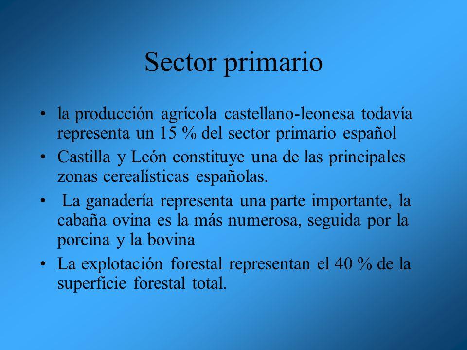 Sector primario la producción agrícola castellano-leonesa todavía representa un 15 % del sector primario español.