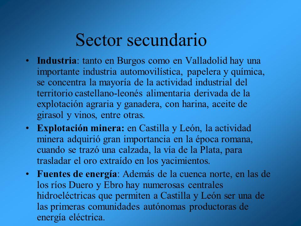 Sector secundario