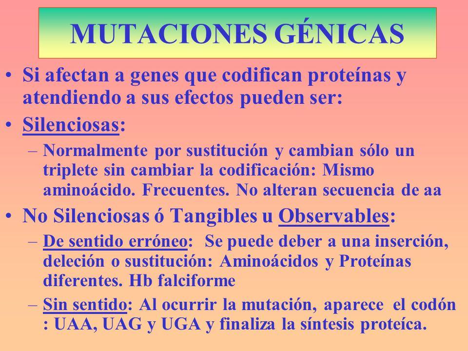 MUTACIONES GÉNICASSi afectan a genes que codifican proteínas y atendiendo a sus efectos pueden ser: