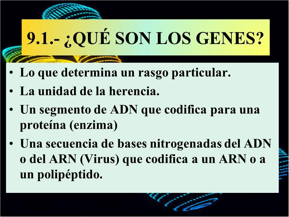9.1.- ¿QUÉ SON LOS GENES Lo que determina un rasgo particular.