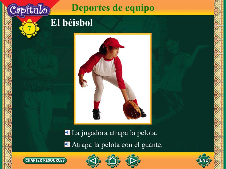 Deportes de equipo El béisbol 7 La jugadora atrapa la pelota.