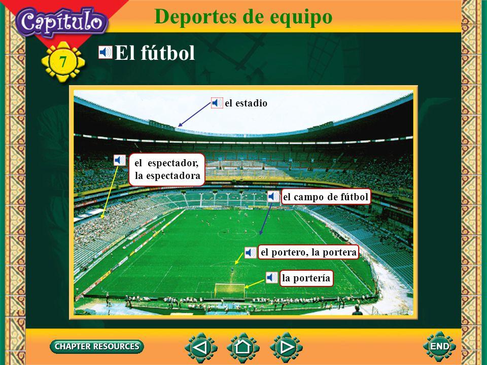 Deportes de equipo El fútbol 7 el estadio el espectador,