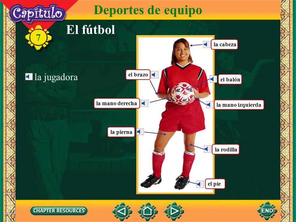 Deportes de equipo El fútbol 7 la jugadora la cabeza el brazo el balón
