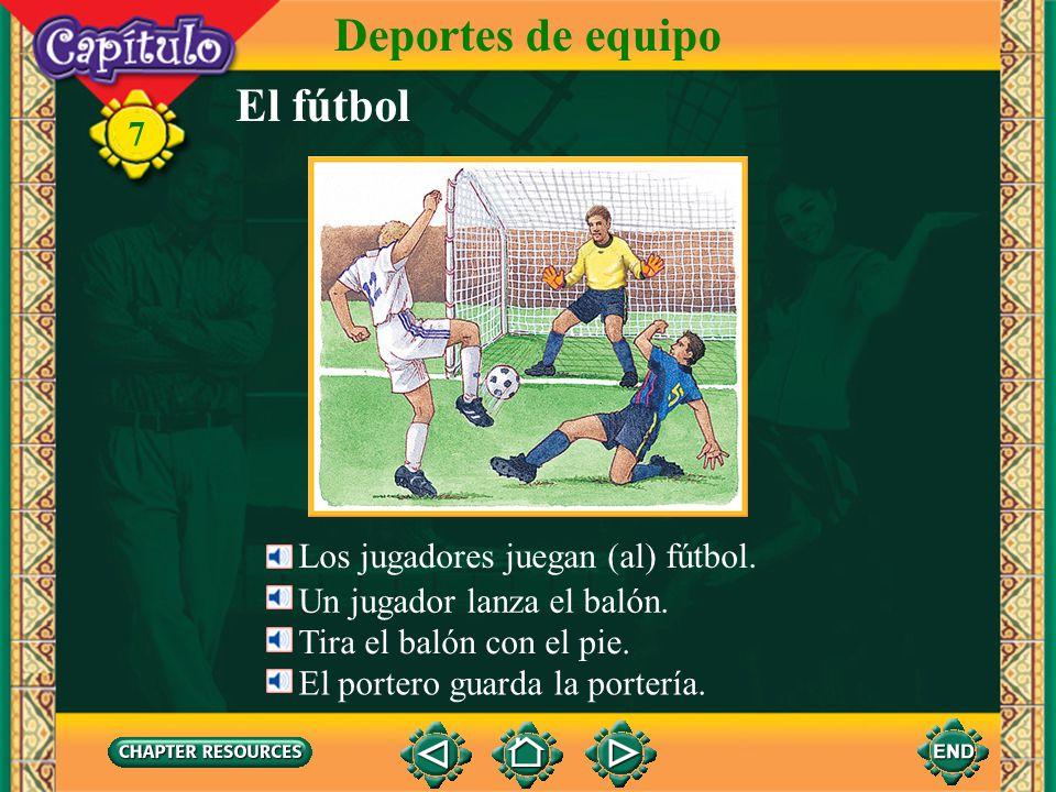 Deportes de equipo El fútbol 7 Los jugadores juegan (al) fútbol.