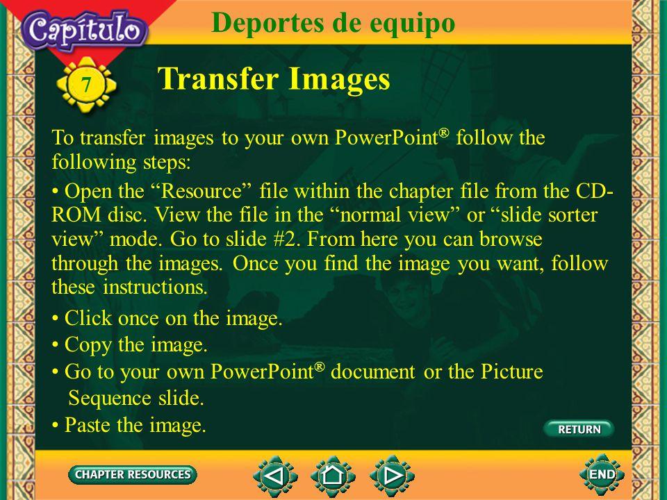 Transfer Images Deportes de equipo 7