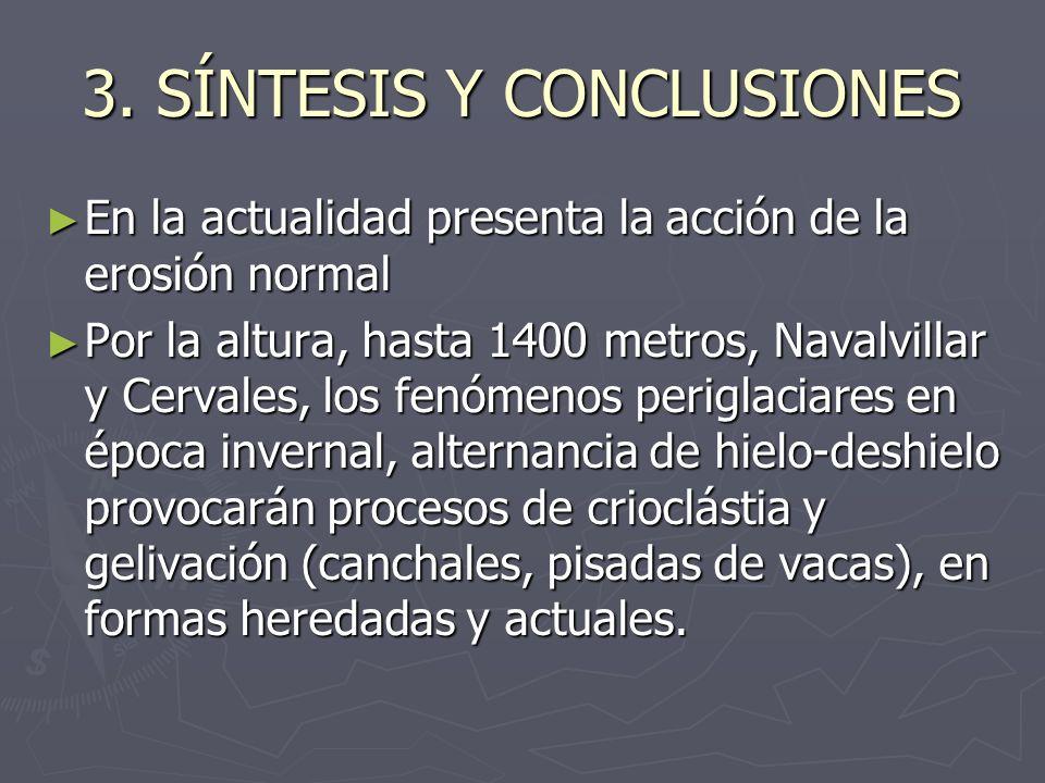 3. SÍNTESIS Y CONCLUSIONES
