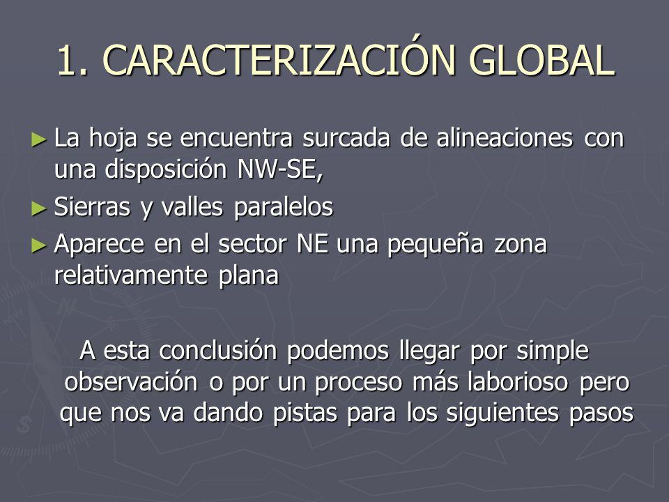 1. CARACTERIZACIÓN GLOBAL