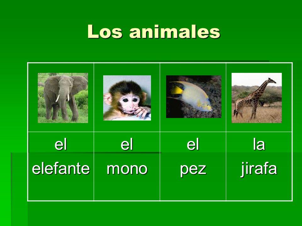 Los animales el elefante mono pez la jirafa