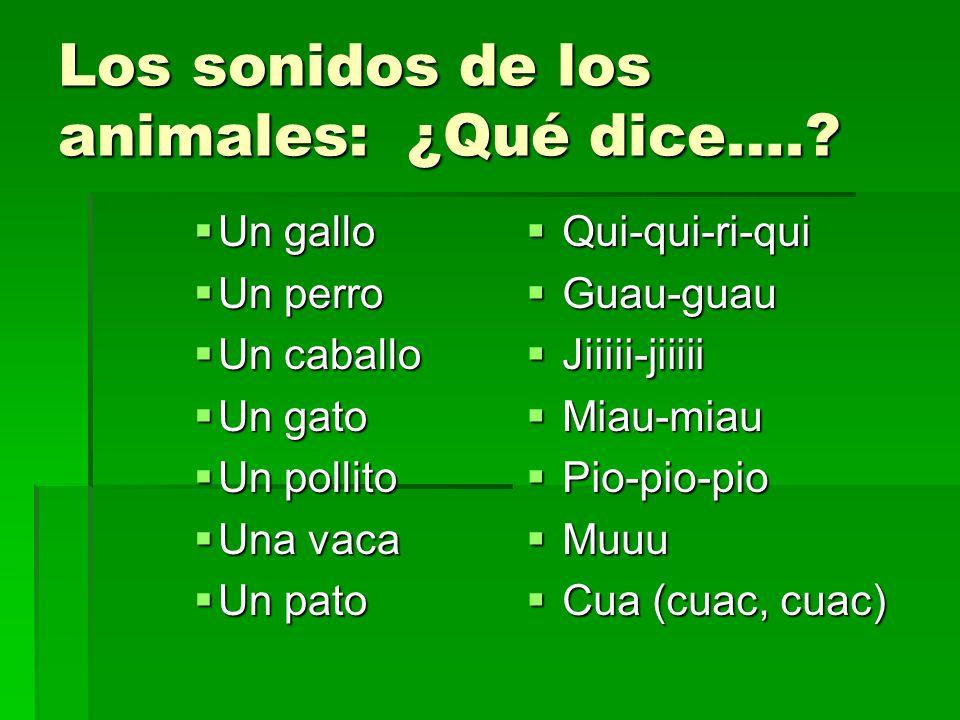 Los sonidos de los animales: ¿Qué dice….