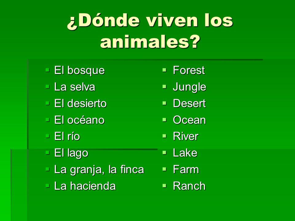 ¿Dónde viven los animales