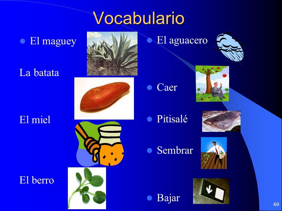 Vocabulario El maguey El aguacero La batata Caer El miel Pitisalé