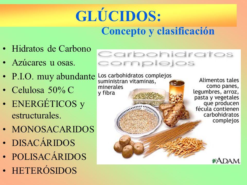 GLÚCIDOS: Concepto y clasificación Hidratos de Carbono